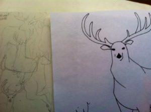 Deer-From Sketches to Final Copy