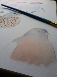 Beautiful Watercolor Kestrel in Progress