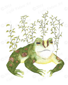 Painted Frog with Spots and Leaves