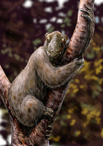 Artwork of Giant Lemur