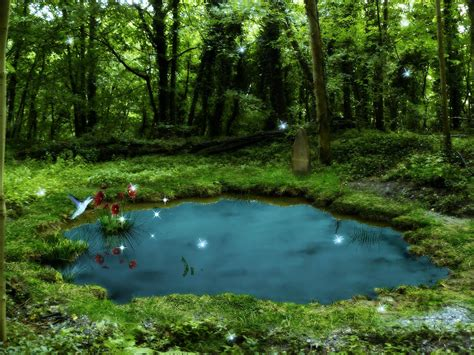 Photo of Ideal Frog Pond