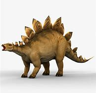Full Grown Stegosaurus