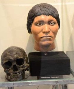 Skull and Reconstructed Face Ancient Human
