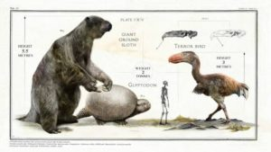Very Large Prehistoric Animals